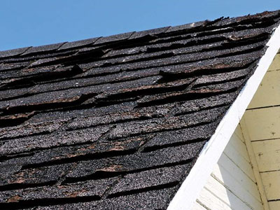 Ideal Roofing Images